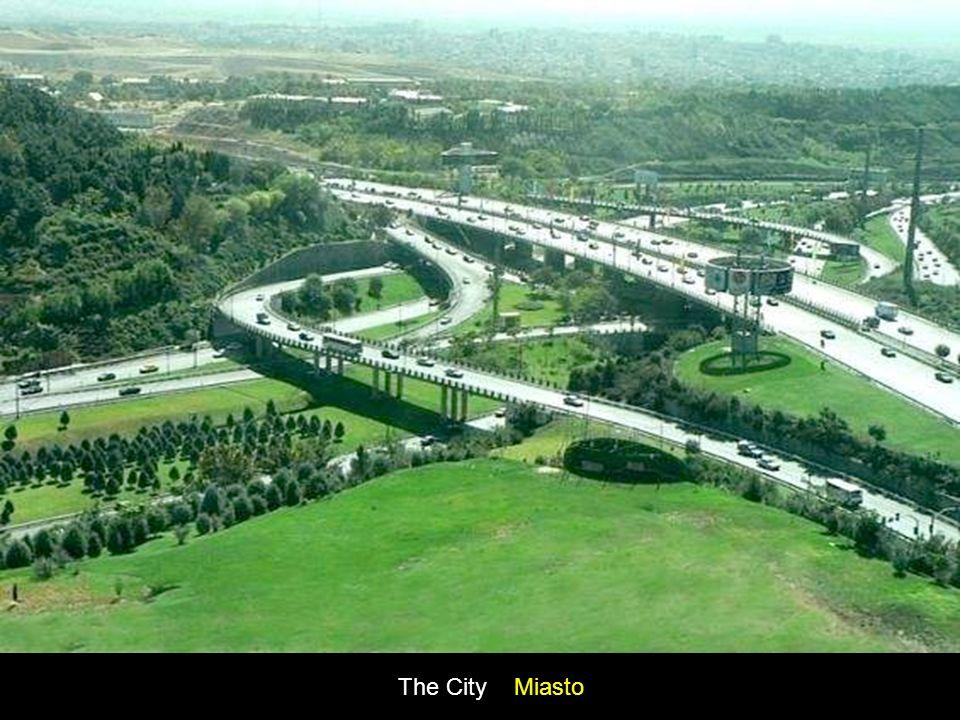 The City Miasto