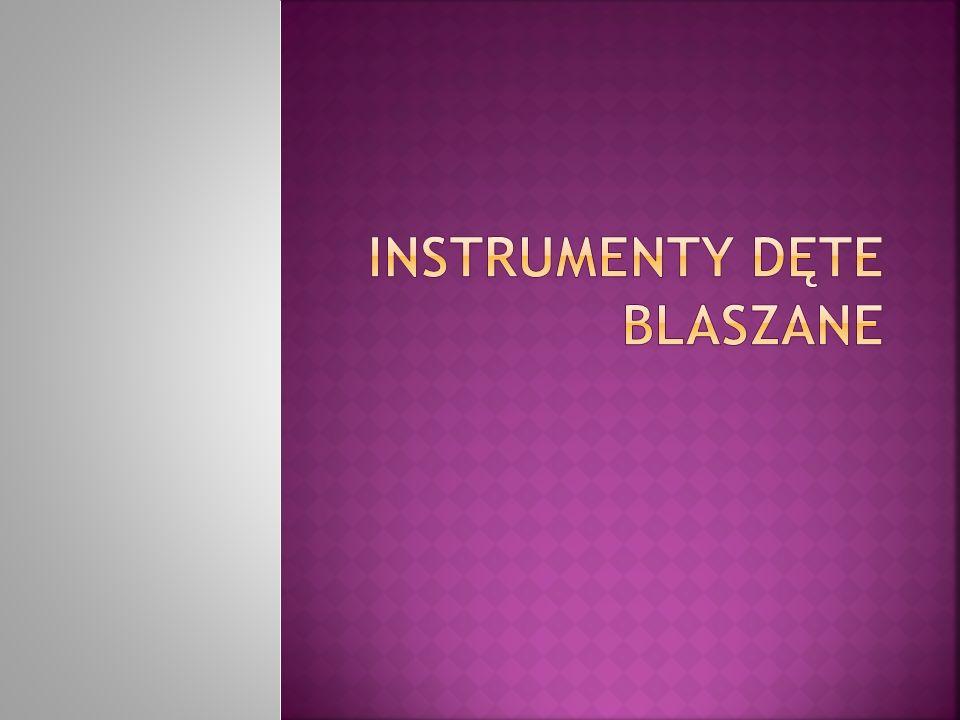 Instrument dęty blaszany instrument dęty, którego ustnik, a w większości przypadków także cały instrument, wykonany jest z metalu.