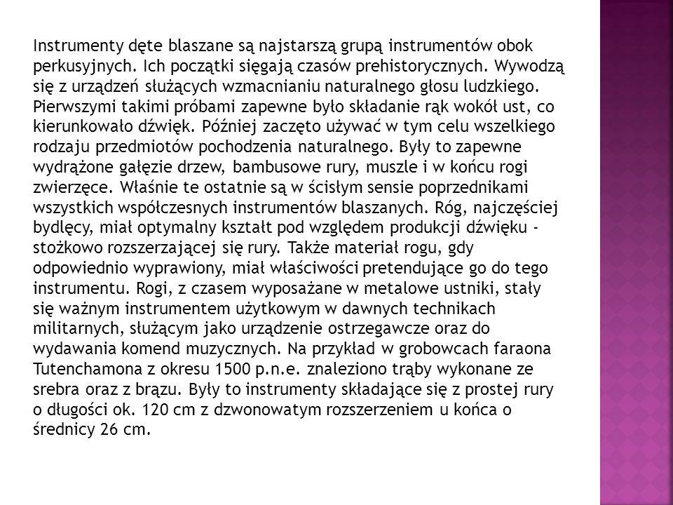 Instrumenty dęte blaszane są najstarszą grupą instrumentów obok perkusyjnych. Ich początki sięgają czasów prehistorycznych. Wywodzą się z urządzeń słu