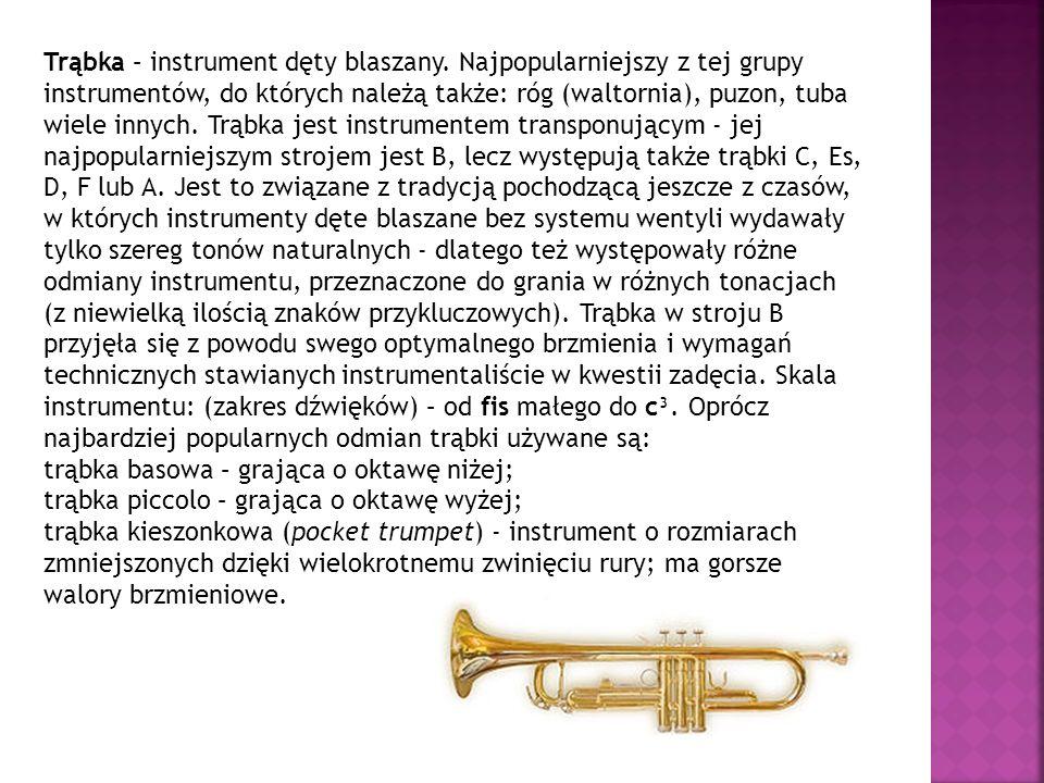 Trąbka – instrument dęty blaszany. Najpopularniejszy z tej grupy instrumentów, do których należą także: róg (waltornia), puzon, tuba wiele innych. Trą