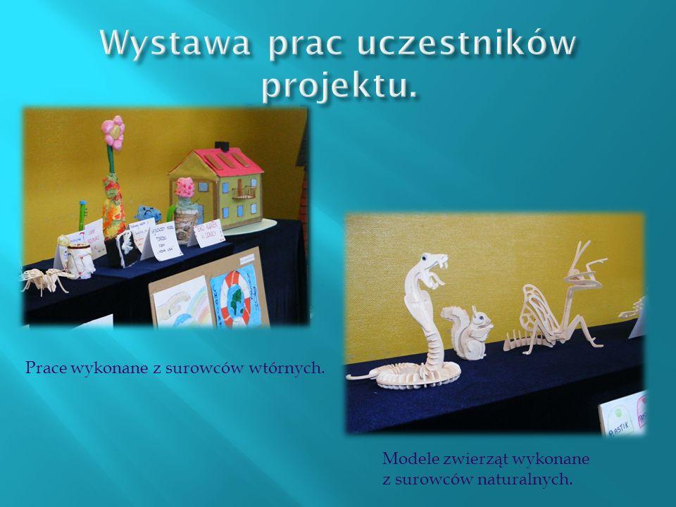 Modele zwierząt wykonane z surowców naturalnych. Prace wykonane z surowców wtórnych.
