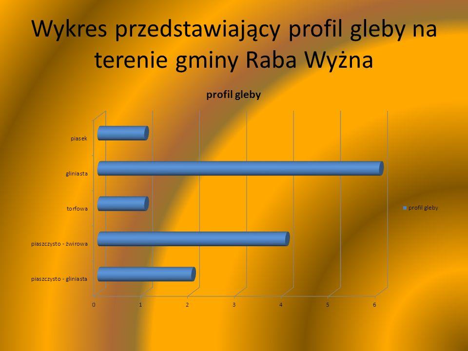 Wykres przedstawiający profil gleby na terenie gminy Raba Wyżna