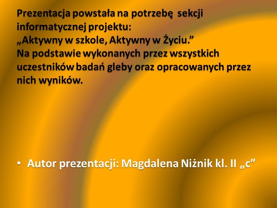 Autor prezentacji: Magdalena Niżnik kl. II c Autor prezentacji: Magdalena Niżnik kl. II c
