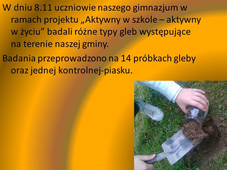 W dniu 8.11 uczniowie naszego gimnazjum w ramach projektu Aktywny w szkole – aktywny w życiu badali różne typy gleb występujące na terenie naszej gmin