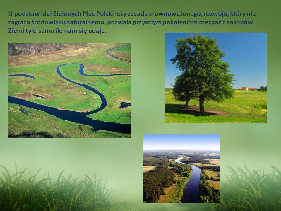 U podstaw idei Zielonych Płuc Polski leży zasada zrównoważonego, rozwoju, który nie zagraża środowisku naturalnemu, pozwala przyszłym pokoleniom czerp