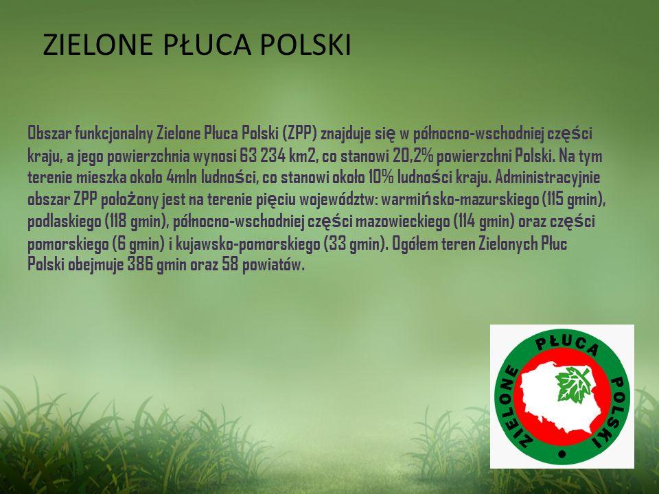Obszar funkcjonalny Zielone Płuca Polski (ZPP) znajduje si ę w północno-wschodniej cz ęś ci kraju, a jego powierzchnia wynosi 63 234 km2, co stanowi 2