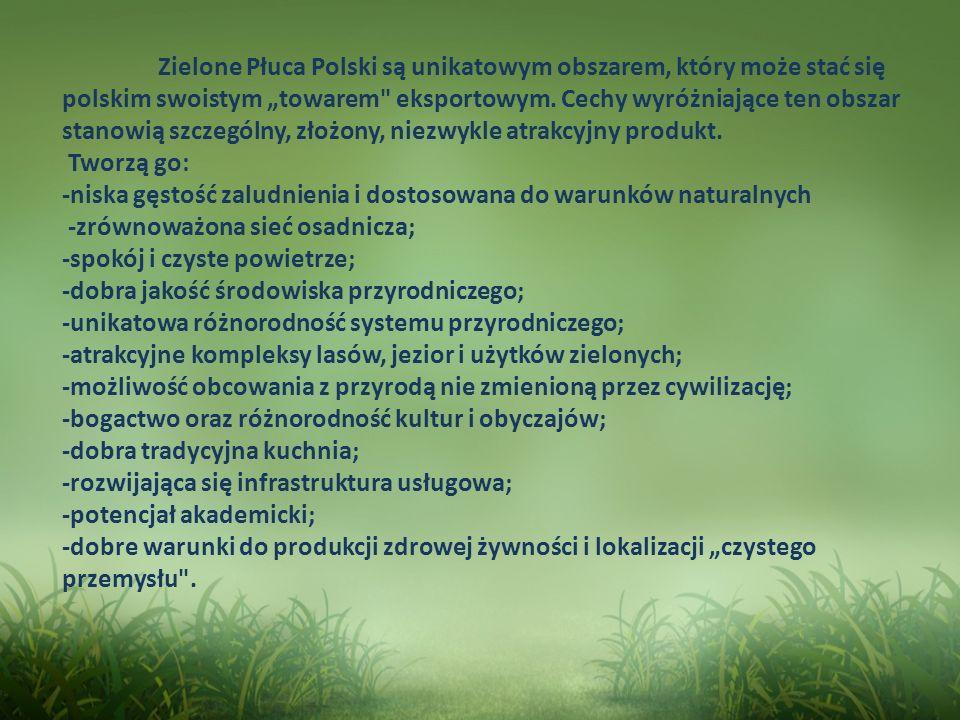 Zielone Płuca Polski są unikatowym obszarem, który może stać się polskim swoistym towarem
