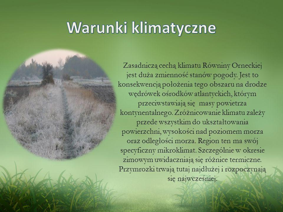 Zasadniczą cechą klimatu Równiny Orneckiej jest duża zmienność stanów pogody.