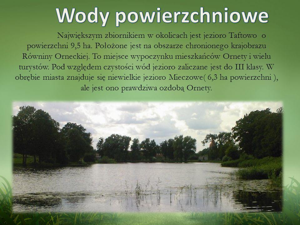 Największym zbiornikiem w okolicach jest jezioro Taftowo o powierzchni 9,5 ha.
