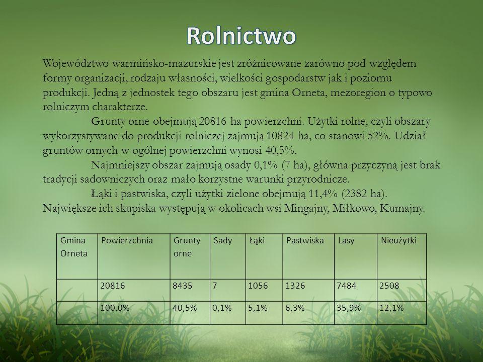 Województwo warmińsko-mazurskie jest zróżnicowane zarówno pod względem formy organizacji, rodzaju własności, wielkości gospodarstw jak i poziomu produkcji.