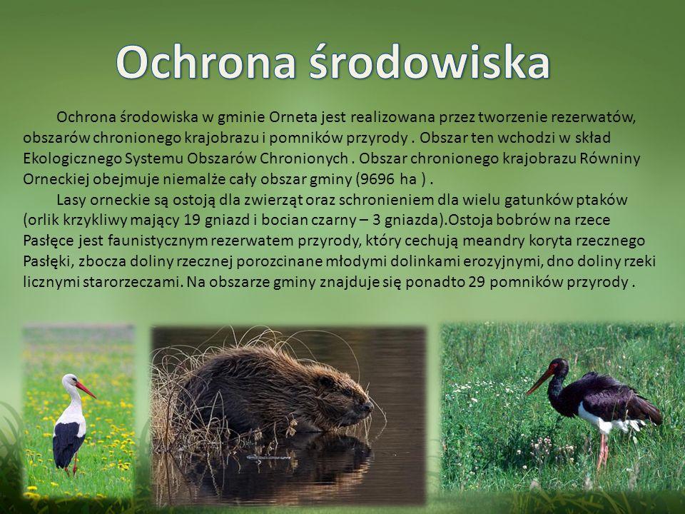 Ochrona środowiska w gminie Orneta jest realizowana przez tworzenie rezerwatów, obszarów chronionego krajobrazu i pomników przyrody.