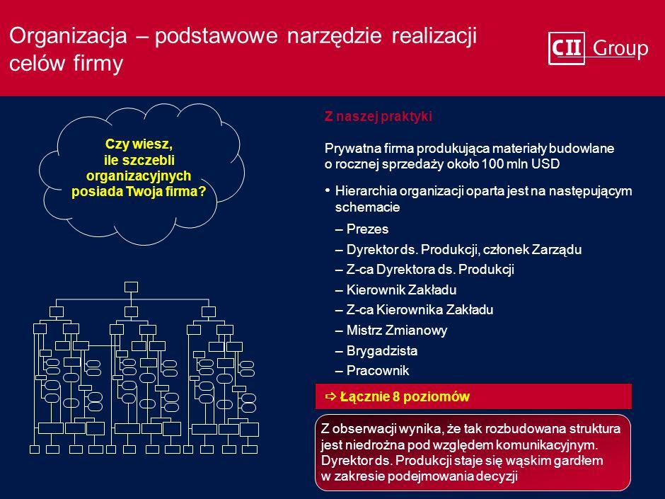 Organizacja – podstawowe narzędzie realizacji celów firmy Z naszej praktyki Prywatna firma produkująca materiały budowlane o rocznej sprzedaży około 100 mln USD –Prezes –Dyrektor ds.