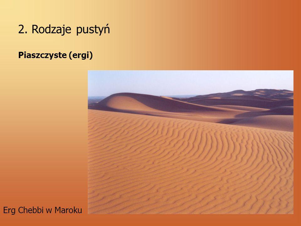 2. Rodzaje pustyń Piaszczyste (ergi) Erg Chebbi w Maroku