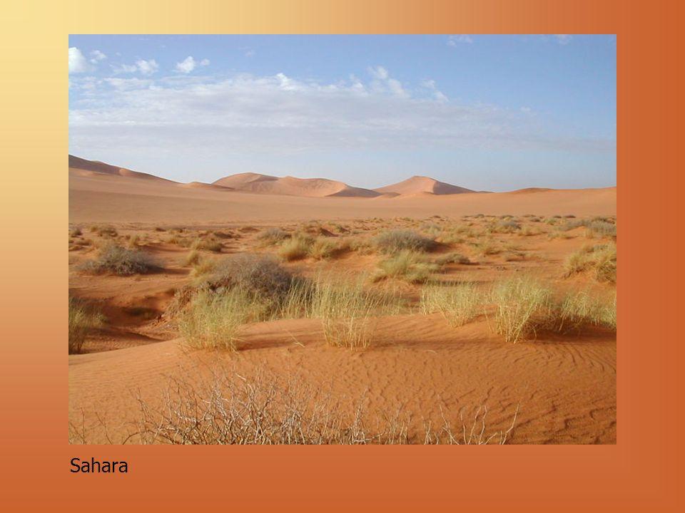 1. Przyczyny powstawania pustyń Cień opadowy
