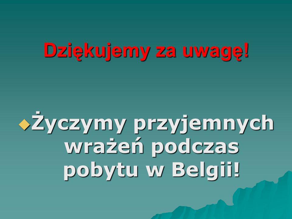 Dziękujemy za uwagę! Życzymy przyjemnych wrażeń podczas pobytu w Belgii! Życzymy przyjemnych wrażeń podczas pobytu w Belgii!