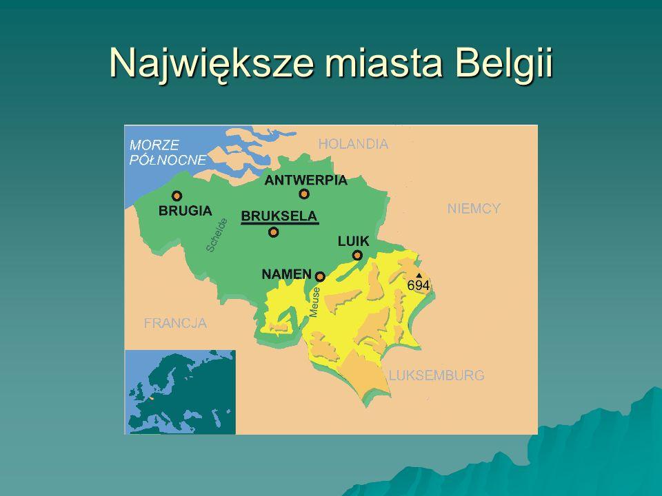 Historia Belgii Historia Historia Przez kilka wieków Belgia nie stanowiła samodzielnego państwa, wchodząc w skład różnych organizmów politycznych m.in.