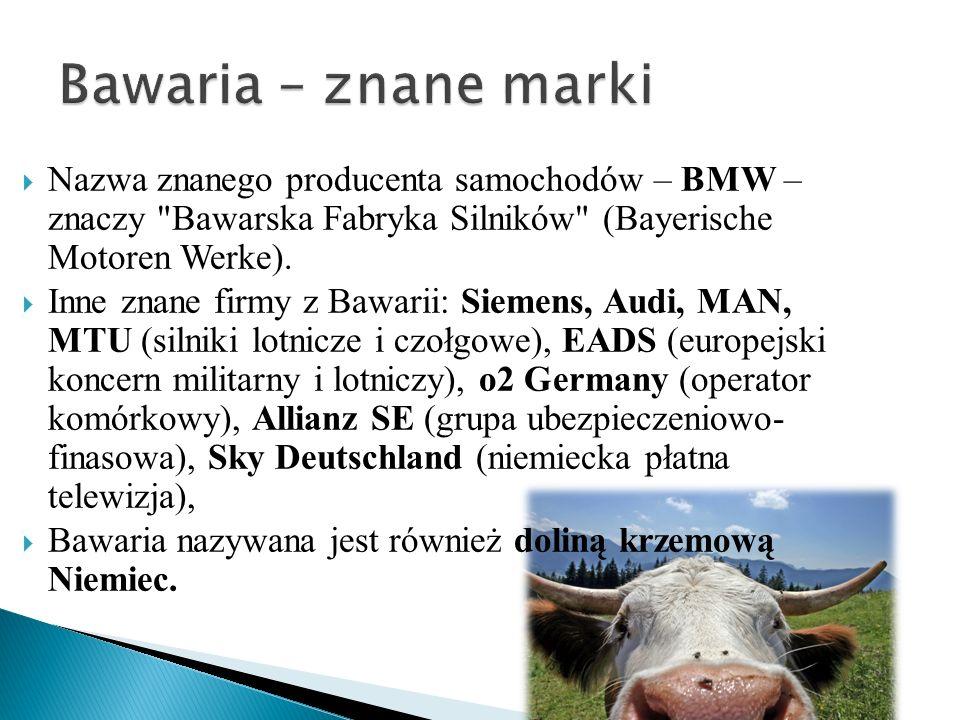 Nazwa znanego producenta samochodów – BMW – znaczy