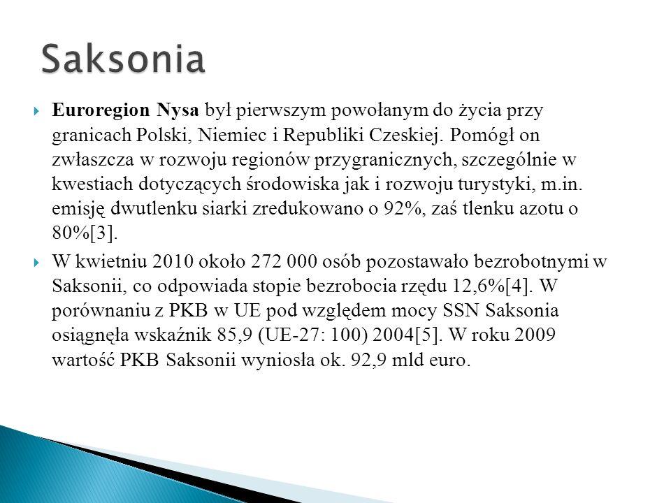 Euroregion Nysa był pierwszym powołanym do życia przy granicach Polski, Niemiec i Republiki Czeskiej. Pomógł on zwłaszcza w rozwoju regionów przygrani