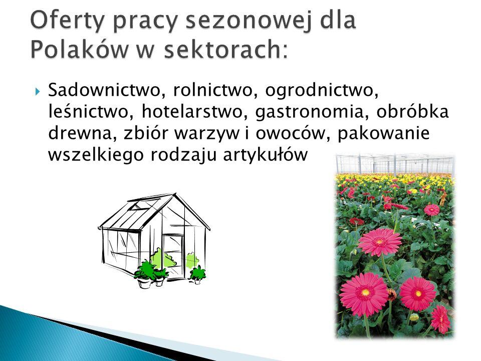 Sadownictwo, rolnictwo, ogrodnictwo, leśnictwo, hotelarstwo, gastronomia, obróbka drewna, zbiór warzyw i owoców, pakowanie wszelkiego rodzaju artykułó