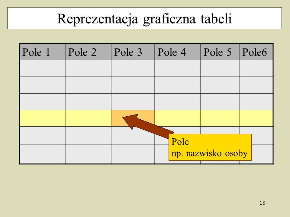 18 Reprezentacja graficzna tabeli Pole 1Pole 2Pole 3Pole 4Pole 5Pole6 Pole np. nazwisko osoby