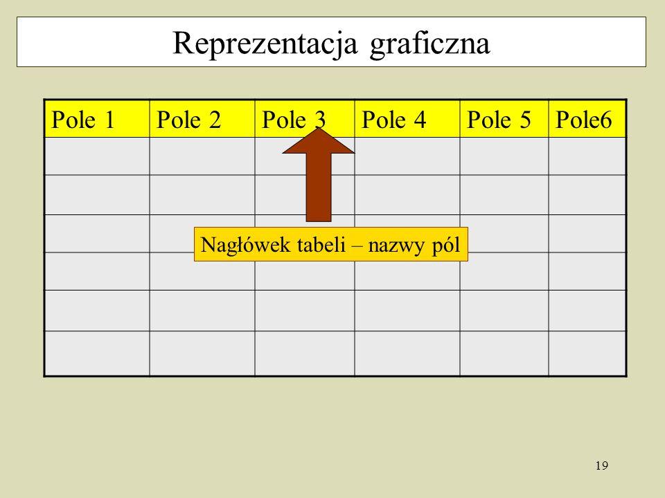 19 Reprezentacja graficzna Pole 1Pole 2Pole 3Pole 4Pole 5Pole6 Nagłówek tabeli – nazwy pól