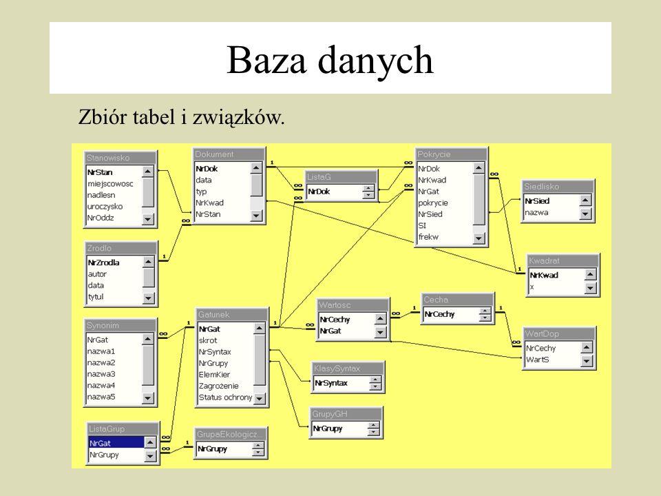 25 Zbiór tabel i związków. Baza danych