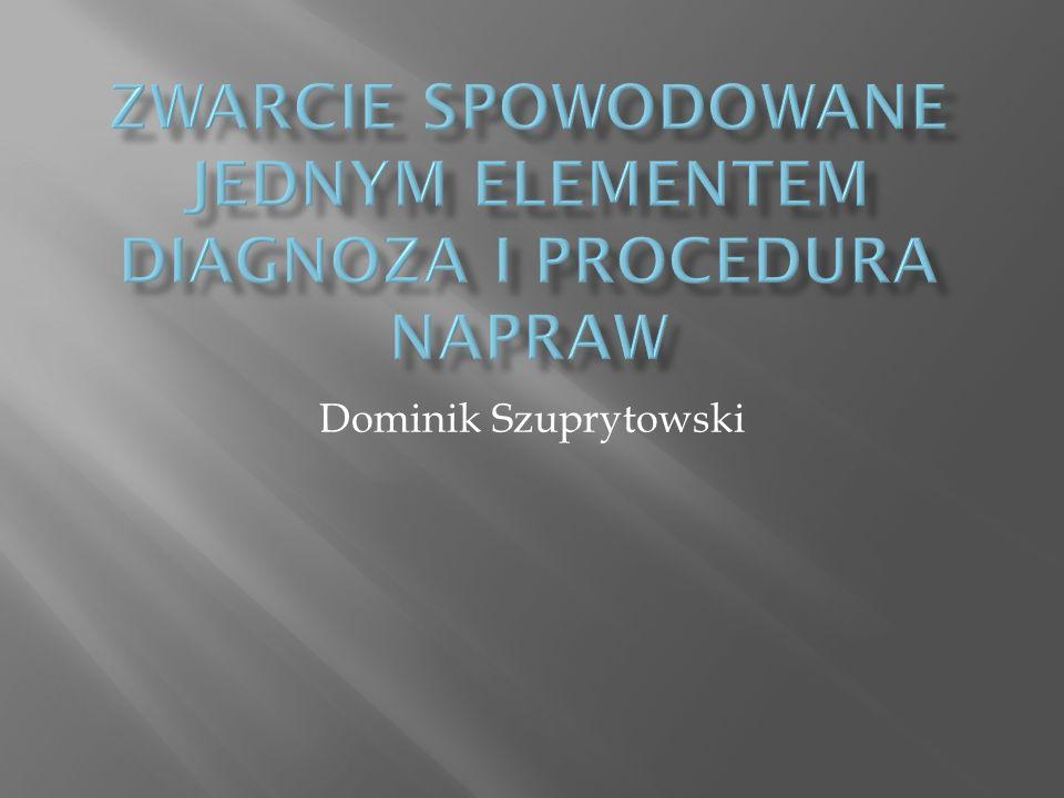 Dominik Szuprytowski