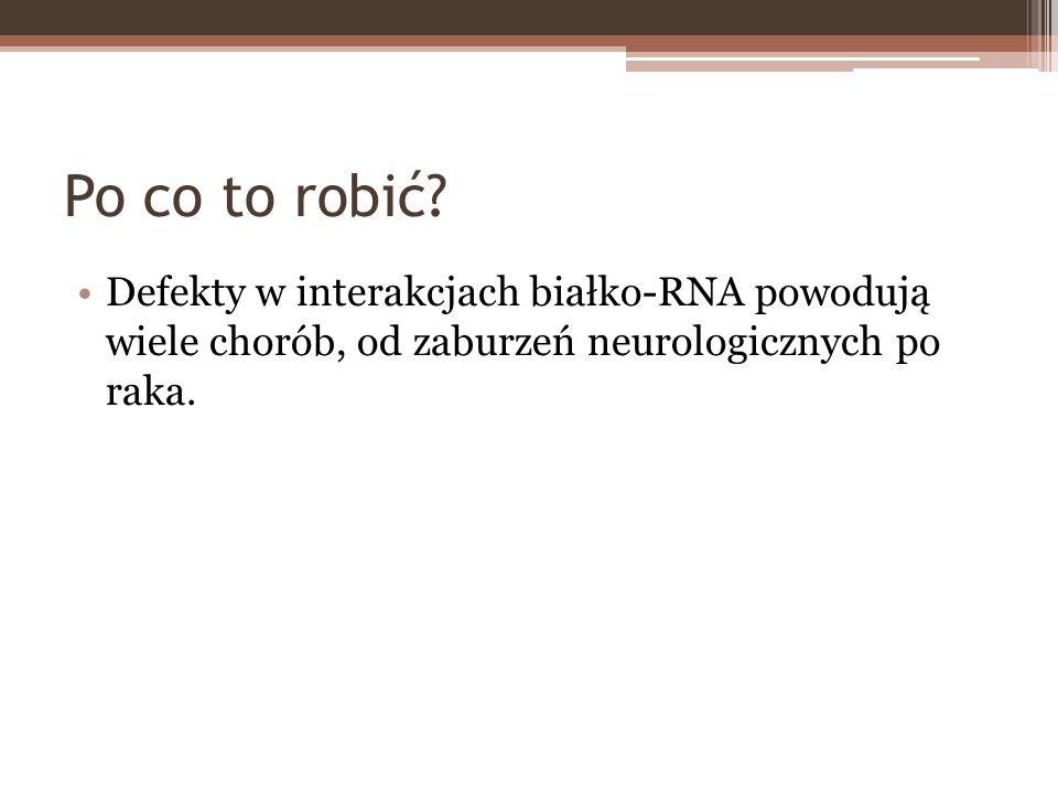 Po co to robić? Defekty w interakcjach białko-RNA powodują wiele chorób, od zaburzeń neurologicznych po raka.