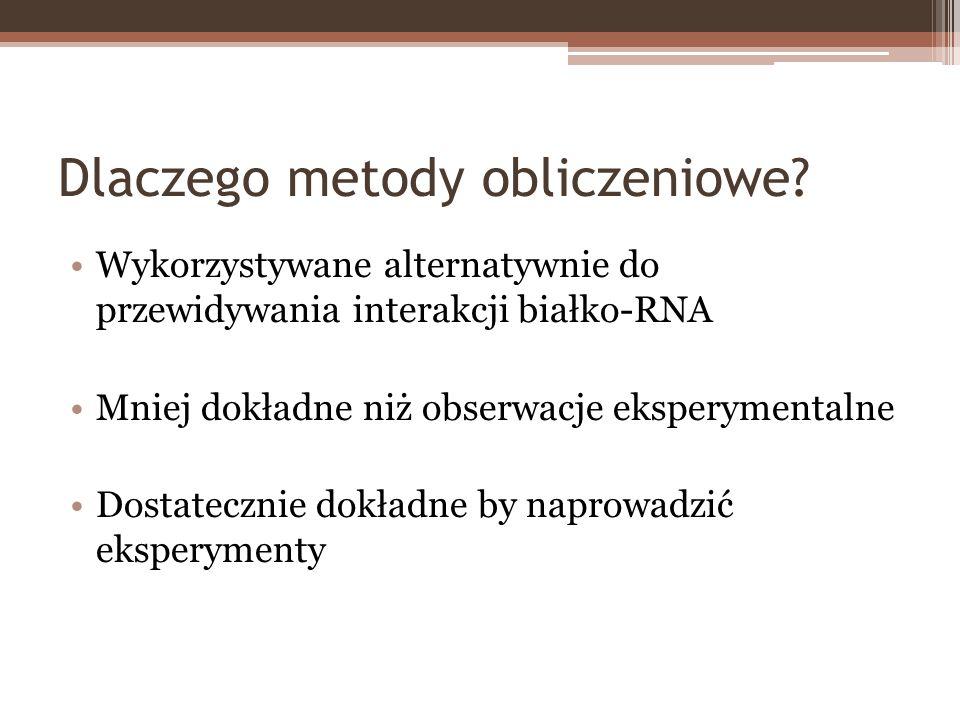 Dlaczego metody obliczeniowe? Wykorzystywane alternatywnie do przewidywania interakcji białko-RNA Mniej dokładne niż obserwacje eksperymentalne Dostat
