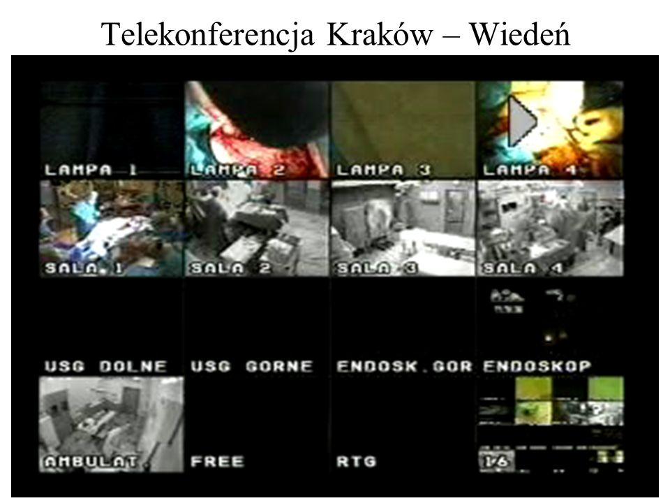 Telekonferencja Kraków – Wiedeń