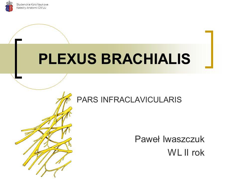 Studenckie Koło Naukowe Katedry Anatomii CM UJ PLEXUS BRACHIALIS PARS INFRACLAVICULARIS Paweł Iwaszczuk WL II rok