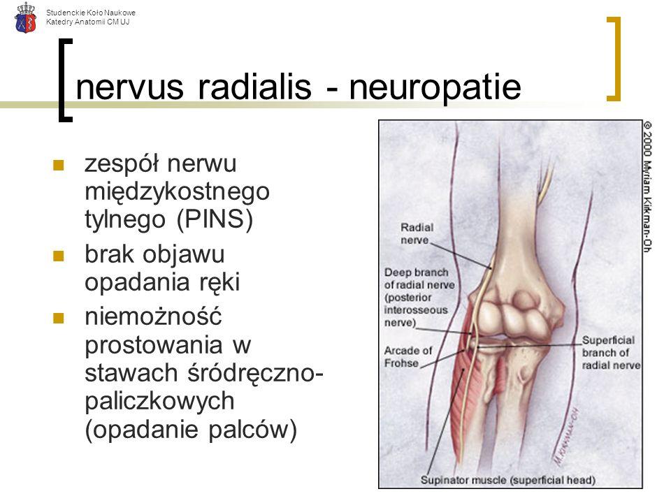 Studenckie Koło Naukowe Katedry Anatomii CM UJ nervus radialis - neuropatie zespół nerwu międzykostnego tylnego (PINS) brak objawu opadania ręki niemo