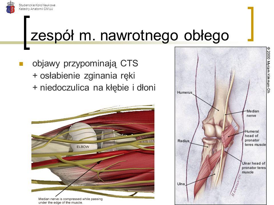 Studenckie Koło Naukowe Katedry Anatomii CM UJ zespół m. nawrotnego obłego objawy przypominają CTS + osłabienie zginania ręki + niedoczulica na kłębie