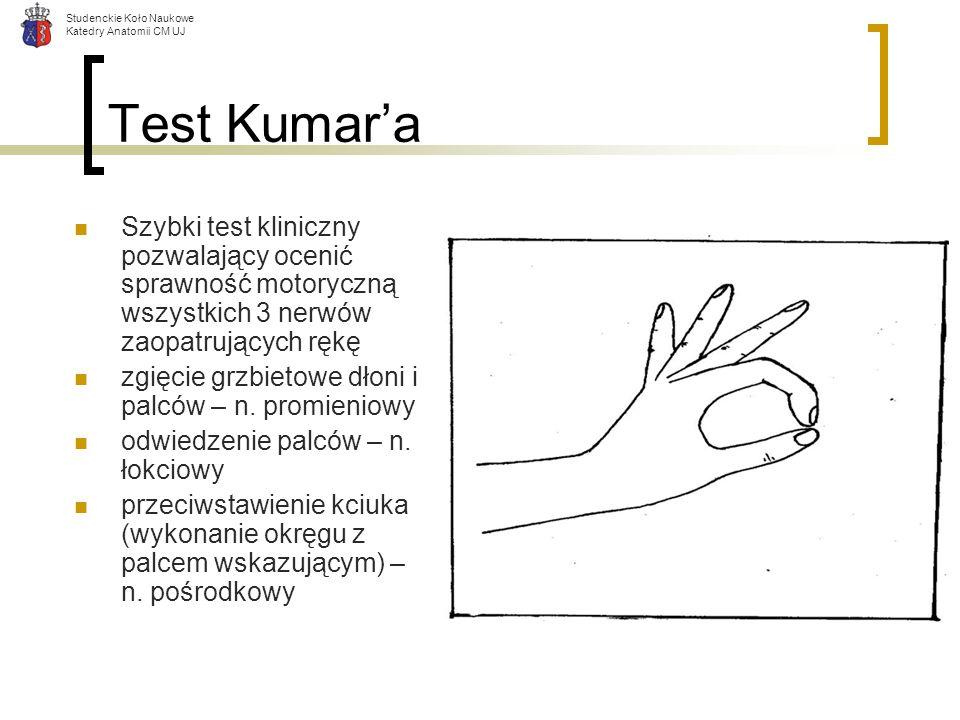 Studenckie Koło Naukowe Katedry Anatomii CM UJ Test Kumara Szybki test kliniczny pozwalający ocenić sprawność motoryczną wszystkich 3 nerwów zaopatruj