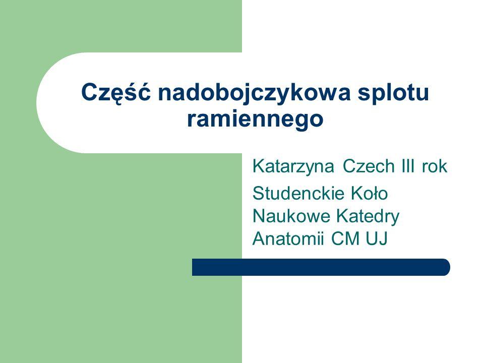 Część nadobojczykowa splotu ramiennego Katarzyna Czech III rok Studenckie Koło Naukowe Katedry Anatomii CM UJ