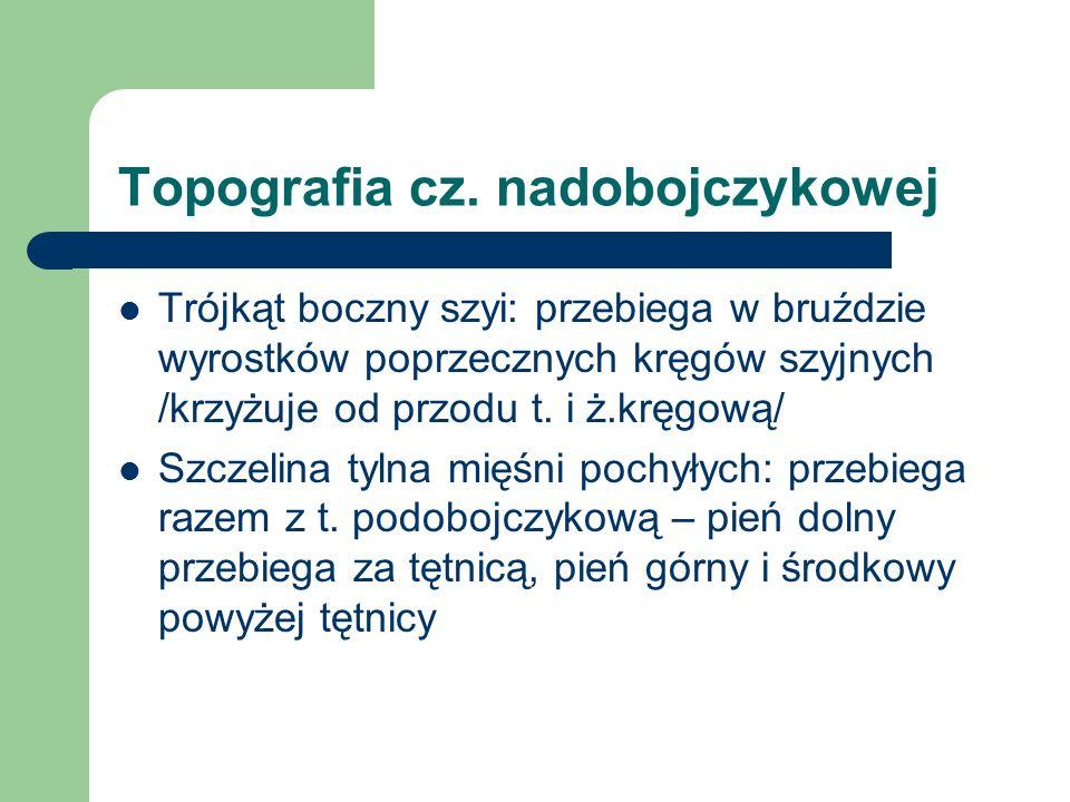 Topografia cz. nadobojczykowej Trójkąt boczny szyi: przebiega w bruździe wyrostków poprzecznych kręgów szyjnych /krzyżuje od przodu t. i ż.kręgową/ Sz