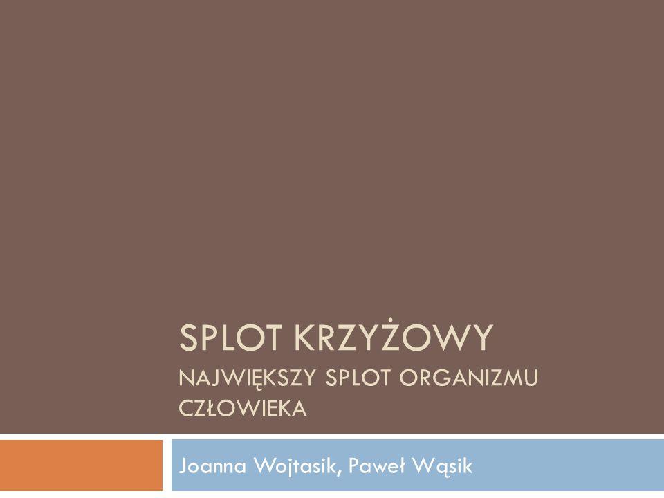 SPLOT KRZYŻOWY NAJWIĘKSZY SPLOT ORGANIZMU CZŁOWIEKA Joanna Wojtasik, Paweł Wąsik