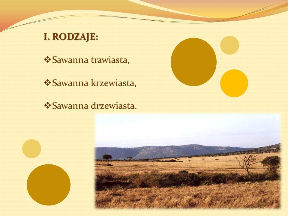 I. RODZAJE: Sawanna trawiasta, Sawanna krzewiasta, Sawanna drzewiasta.