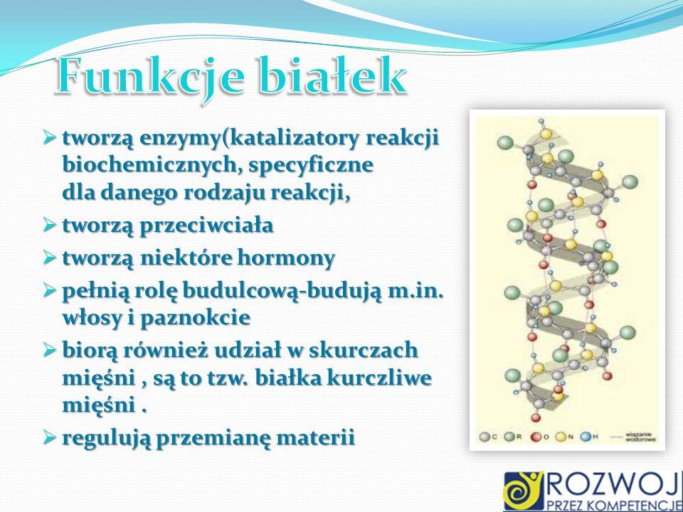 tworzą enzymy(katalizatory reakcji biochemicznych, specyficzne dla danego rodzaju reakcji, tworzą enzymy(katalizatory reakcji biochemicznych, specyfic