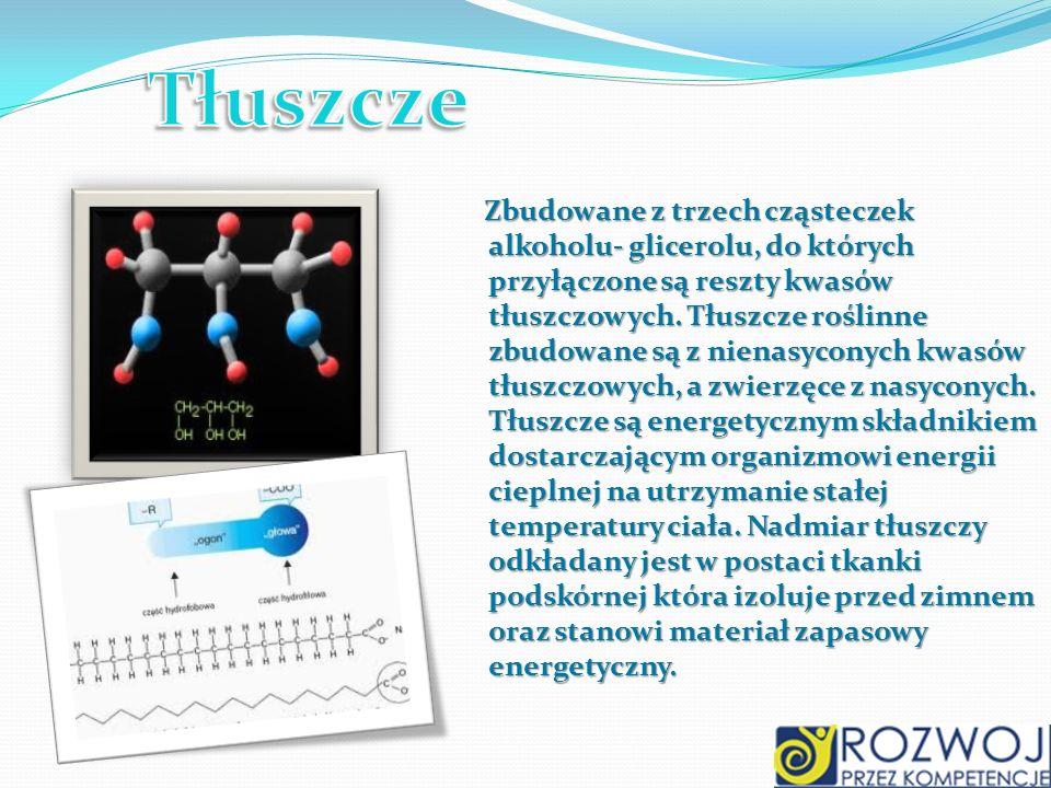 Zbudowane z trzech cząsteczek alkoholu- glicerolu, do których przyłączone są reszty kwasów tłuszczowych. Tłuszcze roślinne zbudowane są z nienasyconyc