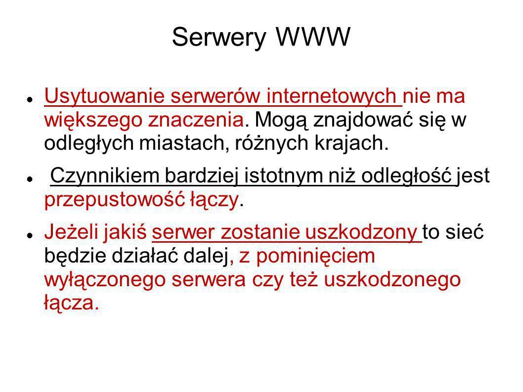 Serwery WWW Usytuowanie serwerów internetowych nie ma większego znaczenia. Mogą znajdować się w odległych miastach, różnych krajach. Czynnikiem bardzi