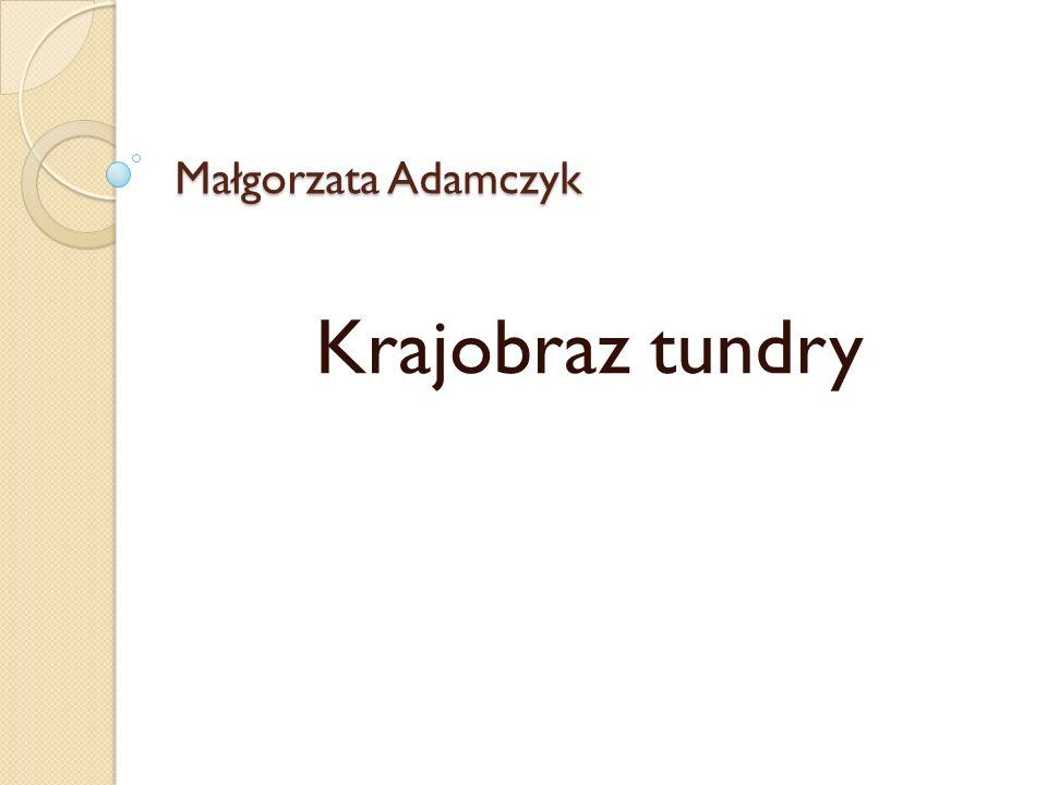 Małgorzata Adamczyk Krajobraz tundry