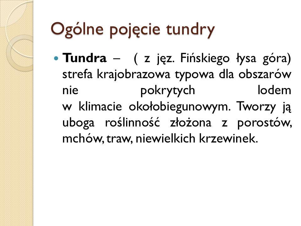Ogólne pojęcie tundry Tundra – ( z jęz. Fińskiego łysa góra) strefa krajobrazowa typowa dla obszarów nie pokrytych lodem w klimacie okołobiegunowym. T
