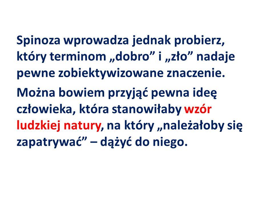 Spinoza wprowadza jednak probierz, który terminom dobro i zło nadaje pewne zobiektywizowane znaczenie. Można bowiem przyjąć pewna ideę człowieka, któr