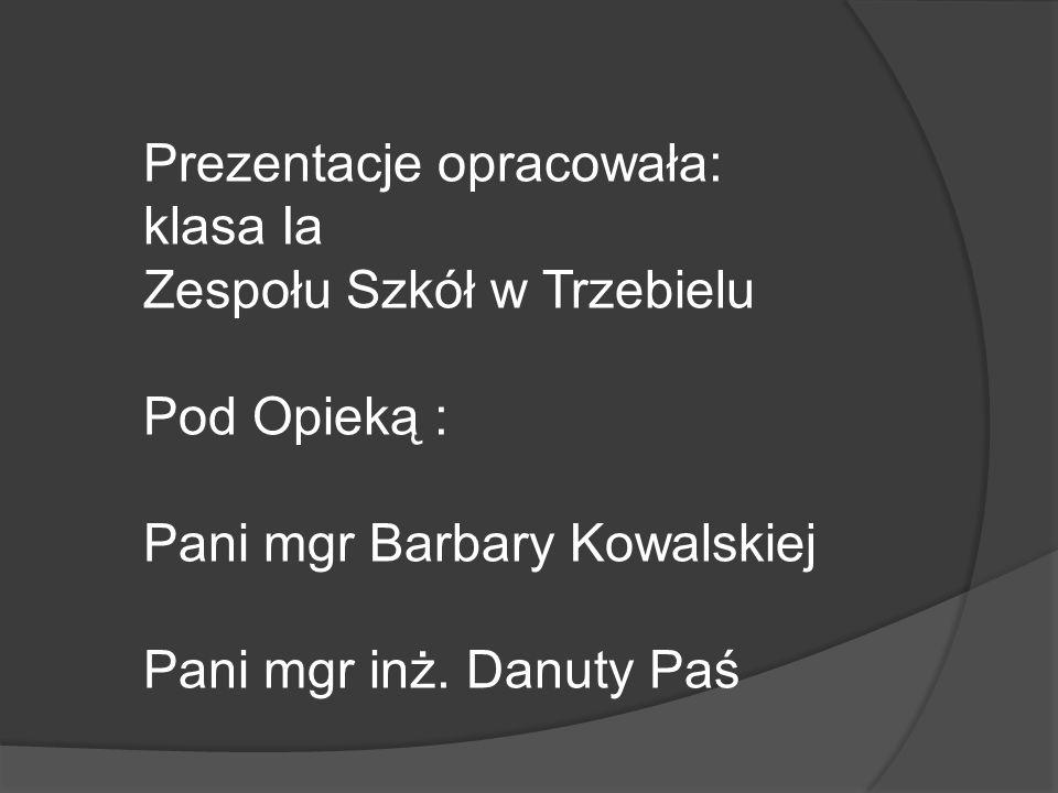 Prezentacje opracowała: klasa Ia Zespołu Szkół w Trzebielu Pod Opieką : Pani mgr Barbary Kowalskiej Pani mgr inż. Danuty Paś