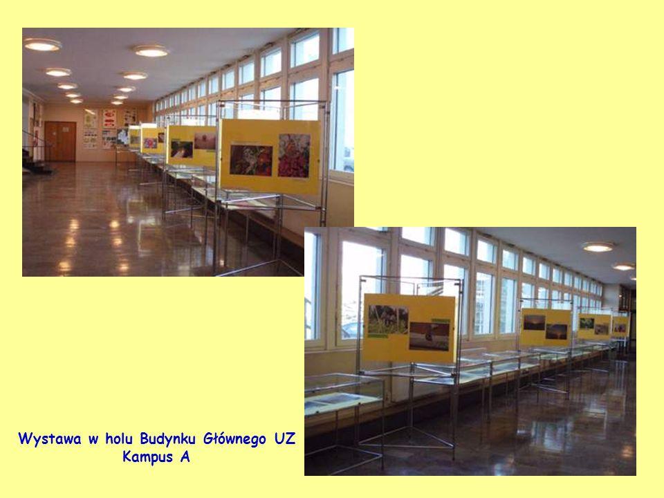 Wystawa w holu Budynku Głównego UZ Kampus A