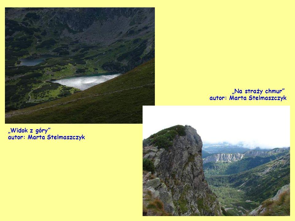 Widok z Kawczej Góry, Międzyzdroje autor: Krystyna Walińska
