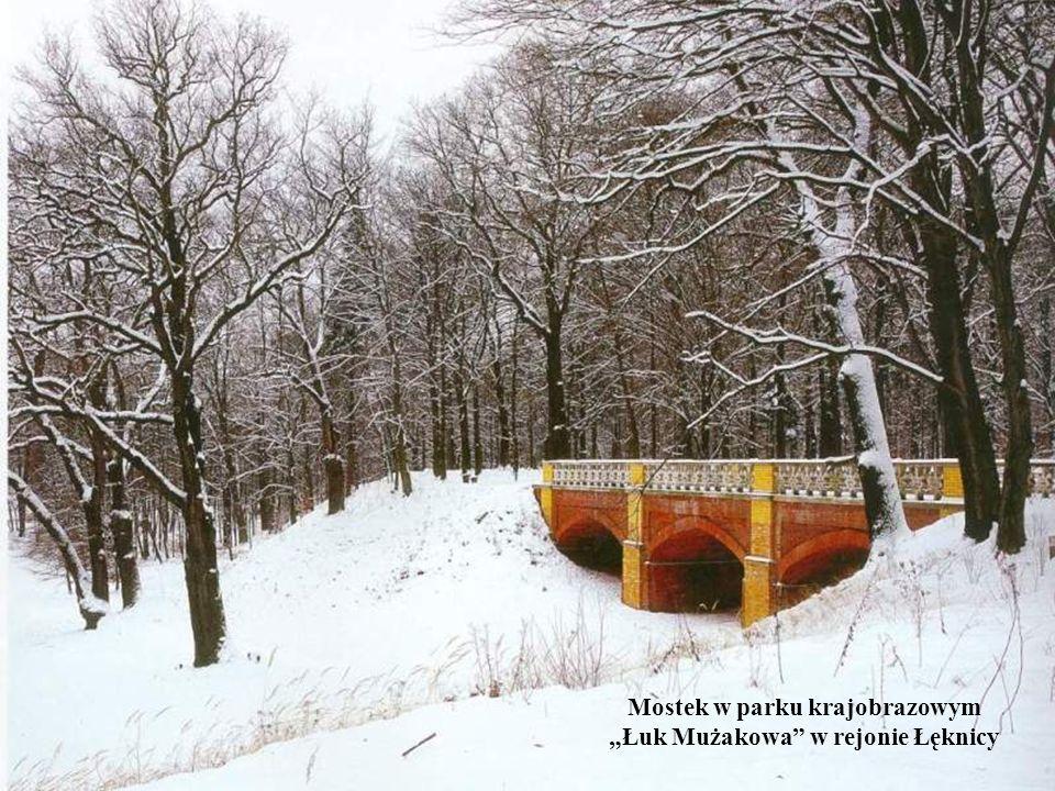 Mostek w parku krajobrazowym Łuk Mużakowa w rejonie Łęknicy