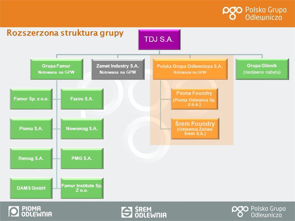 TDJ S.A. Grupa Famur Notowana na GPW Famur Sp. z o.o.Fazos S.A. Pioma S.A.Nowomag S.A. Remag S.A.PMG S.A. DAMS GmbH Famur Institute Sp. Z o.o. Zamet I