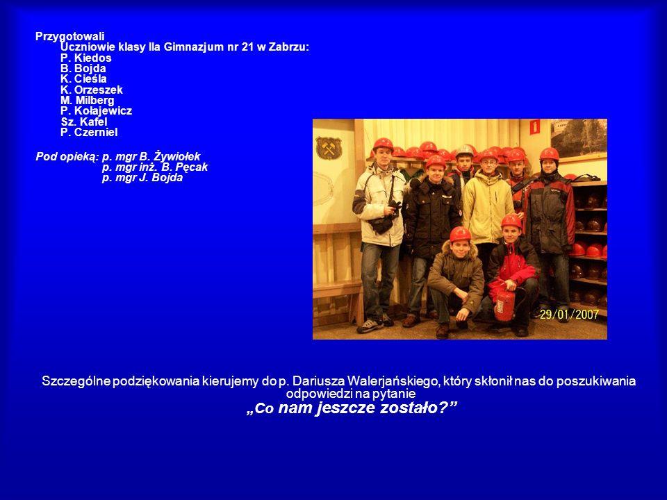 Przygotowali Uczniowie klasy IIa Gimnazjum nr 21 w Zabrzu: P. Kiedos B. Bojda K. Cieśla K. Orzeszek M. Milberg P. Kołajewicz Sz. Kafel P. Czerniel Pod